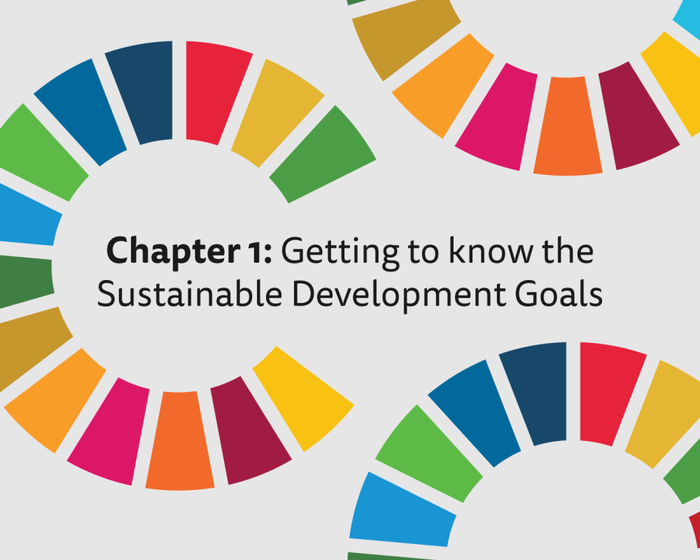 Image result for The role of business for enhancing Sustainable Development in different country contexts