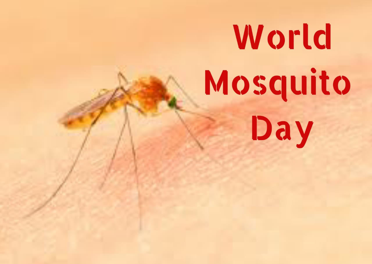 Best World Mosquito day Images 2021